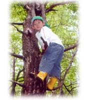 宿泊自然体験教室で「木登り!!」